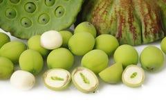 Free Lotus Seed Stock Image - 44321361