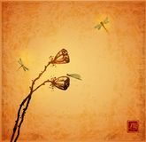 Lotus seed heads and dragonflies on vintage background. Traditional oriental ink painting sumi-e, u-sin, go-hua. Hieroglyph - joy Royalty Free Stock Images