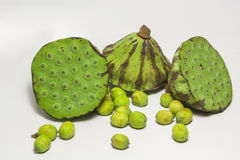Lotus seed and lotus Stock Images