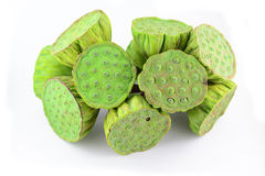 Lotus seed pods in  Stock Image
