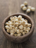 Lotus seeds Stock Images