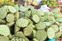 Lotus seeds Royalty Free Stock Photography