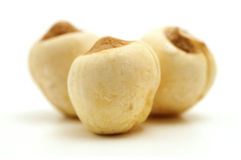 Lotus seeds Stock Photo