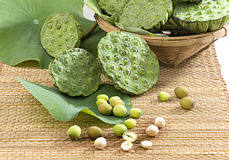 Lotus seeds in the bamboo basket  Royalty Free Stock Image