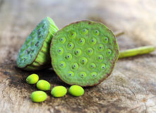 Lotus seeds on old wood Stock Photography