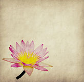 Lotus with set of abstract painted Royalty Free Stock Images