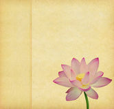 Lotus with set of abstract painted Royalty Free Stock Photos
