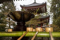 Lotus shaped purification basin and ladles on a bamboo fountain inside the Chion-in Temple of Kyoto, Japan stock photography