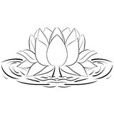 Lotus sketch Flower design elements illustration Stock Images