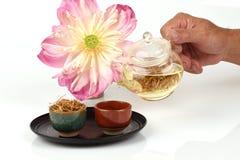 Lotus stamen tea. Stock Photos