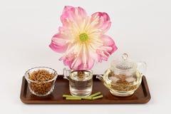 Lotus stamen tea. Stock Image