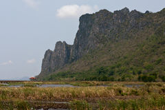 Lotus Swamp in Khao Sam Roi Yot National Park Stock Images