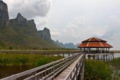 Lotus Swamp in Khao Sam Roi Yot National Park Stock Photo