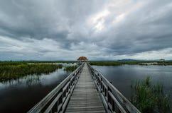 Lotus-Teich bei Sam Roi Yod Stockbilder
