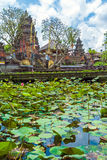 Lotus Temple with Pond, Ubud, Bali Stock Images