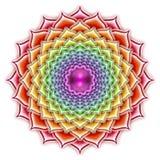 Lotus Thousandfold de floraison illustration stock