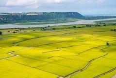 Lotus valley in Waipu Royalty Free Stock Image