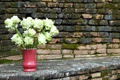 Lotus Vase Fotos de archivo libres de regalías