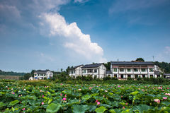 Lotus village in blue sky Royalty Free Stock Photo