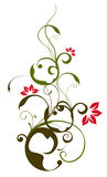 Lotus and vines pattern. Drawing of flower and vines pattern in a white background stock illustration