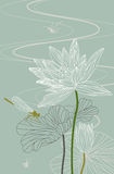 Lotus. Waterlily. Dragonfly. Vector. Illustration Stock Images