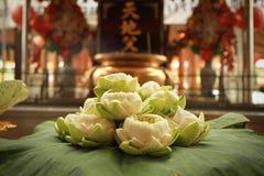 Lotus, welches die Blume für beten Lizenzfreie Stockfotografie