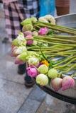 lotus for worship buddha Stock Images
