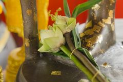 Lotus for the worship of Thailand. Flower Royalty Free Stock Images
