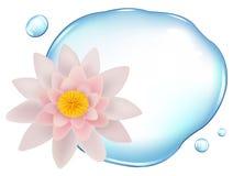 lotusblomma över vektorvatten royaltyfri illustrationer
