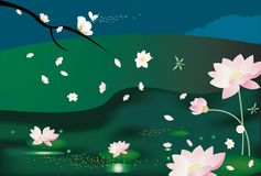 Lotusblomma bg Royaltyfria Bilder