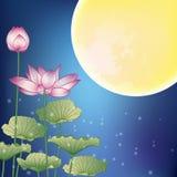 Lotusblomma och Moon på natten Arkivfoton
