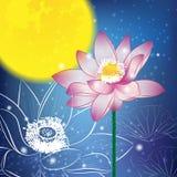 Lotusblomma och Moon på natten Royaltyfri Foto