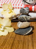 lotusblomma stenar wellness Arkivbild