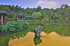 lotusblomman på Fanling Hong Lok Park hk arkivbild