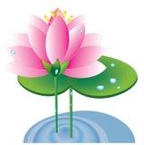 lotusblommapink royaltyfri illustrationer