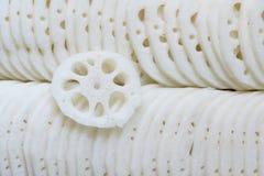lotusblommar rotar Arkivbilder