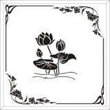 lotusblommar tränga någon Royaltyfri Bild