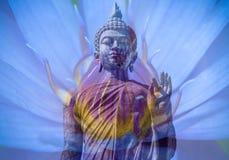 Lotusbuddha Royalty Free Stock Images