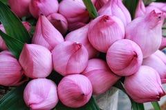 lotuses Imagem de Stock Royalty Free