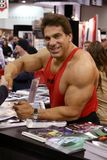 Lou Ferrigno at Arnold Fitness Health Expo. Lou Ferrigno at the 2005 Arnold Fitness Health Expo in Columbus, Ohio Stock Photography