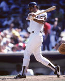 Lou Piniella. New York Yankees OF Lou Piniella. (Image taken from color slide stock image