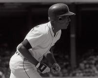 Lou Whitaker Detroit Tigers arkivfoton