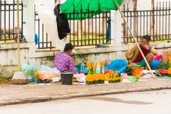 LOUANGPHABANG,老挝- 2017年1月11日:花城市街道销售  复制文本的空间 库存照片
