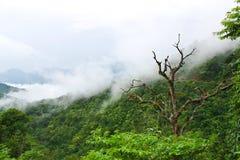 ?louds nelle montagne del Messico immagini stock