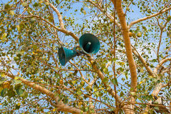 Loudspeaker creative on a tree, closeup. India stock image