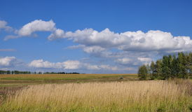 Сloudy sky. Beautiful summer landscape, pleasing look with bright colors Stock Photos
