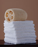Loufah com Towelettes Imagens de Stock