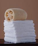 Loufah met Towelettes Stock Afbeeldingen