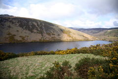Lough dan. Royalty Free Stock Photography