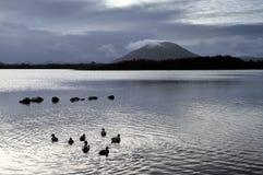 Lough di Beltra Fotografie Stock